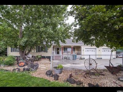 Payson Single Family Home For Sale: 11578 S 5250 W