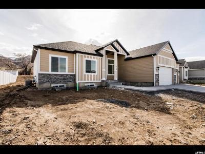 Single Family Home For Sale: 214 S 890 E
