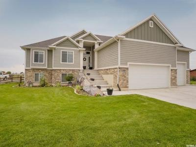 Weber County Single Family Home For Sale: 1839 S 3335 W