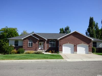 Smithfield Single Family Home For Sale: 729 Robin St