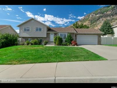 Springville Single Family Home For Sale: 431 E 1100 N