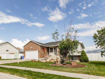 Farr West Single Family Home Under Contract: 2746 N 2500 W