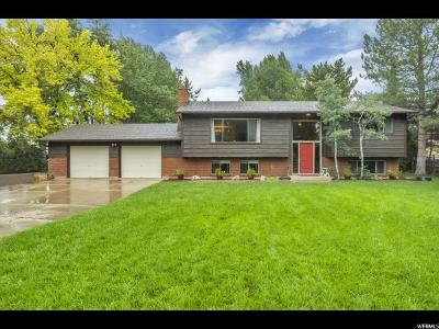 American Fork UT Single Family Home For Sale: $549,000