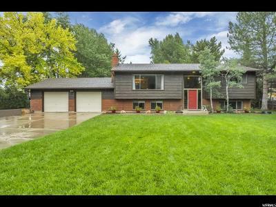 American Fork Single Family Home For Sale: 1155 E 300 N