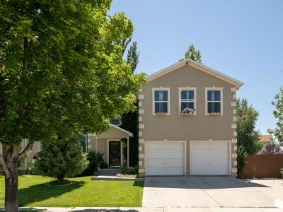 Wasatch County Single Family Home For Sale: 451 W 500 N
