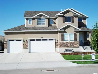 Tooele County Single Family Home For Sale: 580 W Houston St