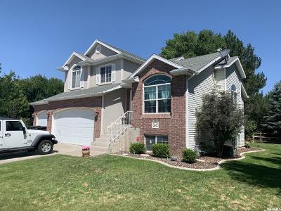 Davis County Single Family Home Under Contract: 2442 E Cedar Glen Cir S