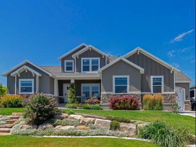 Saratoga Springs Single Family Home For Sale: 2097 Cameron