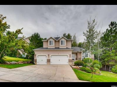 Draper Single Family Home For Sale: 1432 E Annie Lace Way S