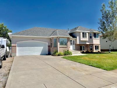 Davis County Single Family Home For Sale: 848 W 1420 N