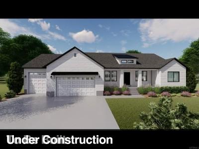 Salem Single Family Home For Sale: 852 E 960 S