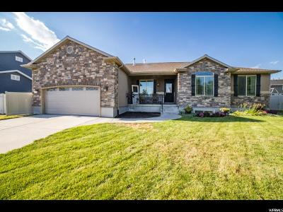 Davis County Single Family Home For Sale: 2082 W Colt Dr
