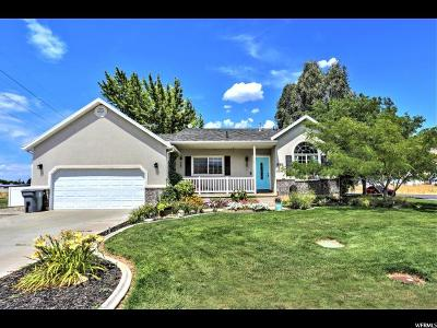 Mapleton Single Family Home Under Contract: 830 W 1000 N