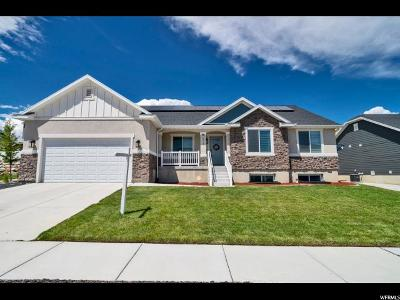 Lehi Single Family Home For Sale: 572 W Mountain View Rd