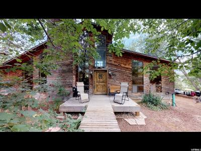 Salem Single Family Home For Sale: 343 E Salem Canal Rd