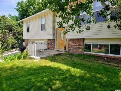 Kaysville Single Family Home For Sale: 1290 N Winston Dr E