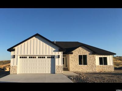 Single Family Home For Sale: 463 E Canyon Rim Rd