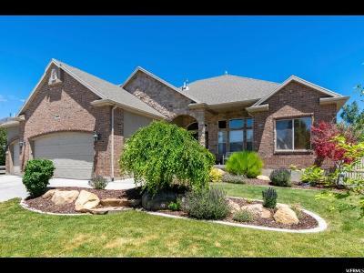 Lehi Single Family Home For Sale: 3302 N Alpine Vista Way E