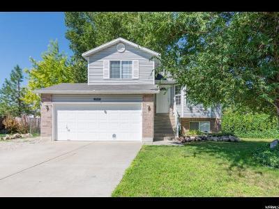Davis County Single Family Home For Sale: 2149 N 2525 W