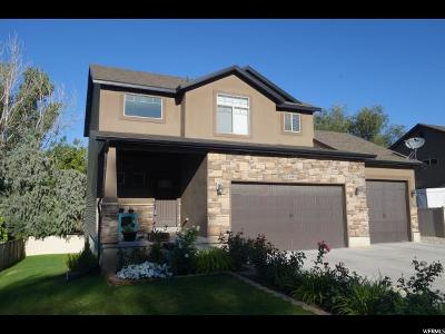 Roy Single Family Home For Sale: 4983 S 3050 W #10