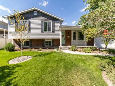 Riverton Single Family Home Under Contract: 2074 W 12190 St S