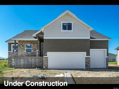 Weber County Single Family Home Under Contract: 3937 W 2400 N #223