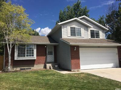 Tooele County Single Family Home For Sale: 59 Lakeview