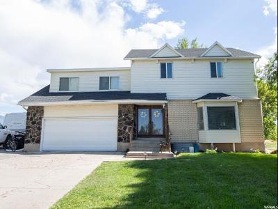 Tooele County Single Family Home For Sale: 378 W Church Rd N