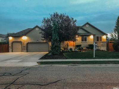 Draper Single Family Home For Sale: 307 W 13130 S