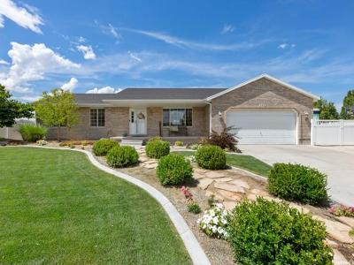 Riverton Single Family Home For Sale: 2352 W 13750 S