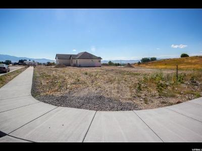 Smithfield Residential Lots & Land For Sale: 355 N 480 E
