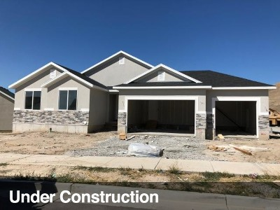 Tooele County Single Family Home For Sale: 2045 E High Rock Rd