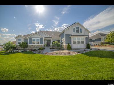 Eagle Mountain Single Family Home For Sale: 9441 Blue Sky Dr