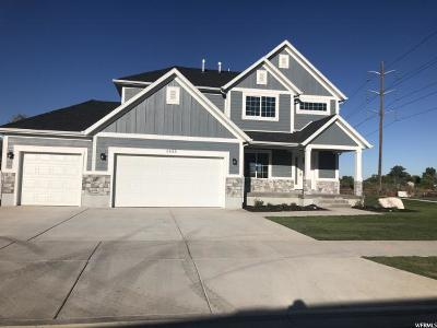 South Weber Single Family Home For Sale: 6485 S Silver Oak Ln