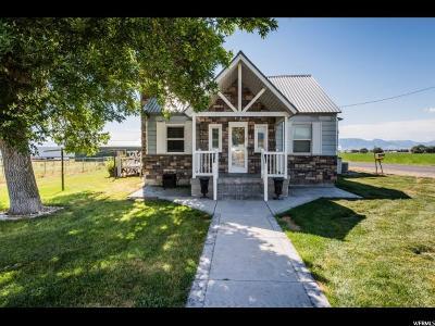 Preston Single Family Home For Sale: 2214 S 1600 E