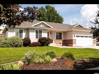 Heber City Single Family Home For Sale: 310 N Waterside Ct E