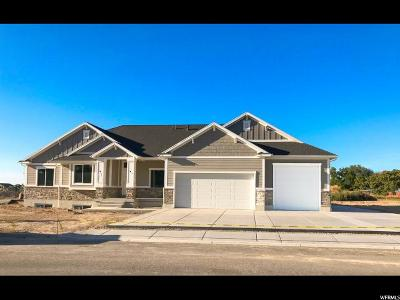 Davis County Single Family Home For Sale: 3052 W 1495 N