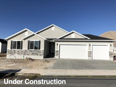 Tooele County Single Family Home For Sale: 2057 E Rich Rock Rd