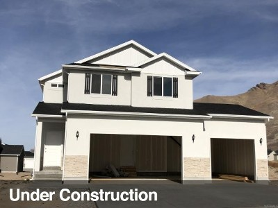 Tooele County Single Family Home For Sale: 197 Monument Rock Rd