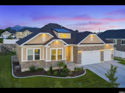 Lehi Single Family Home For Sale: 2764 N Trail Side Dr N