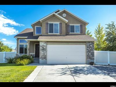 Tooele County Single Family Home For Sale: 158 W Boatsman Cir N