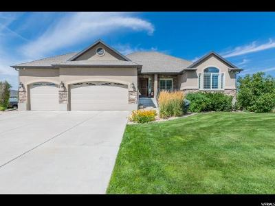 Davis County Single Family Home For Sale: 1267 N 1285 W