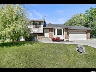 Orem Single Family Home For Sale: 260 S 860 E