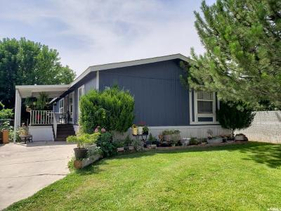 Springville Single Family Home For Sale: 1025 N 300 W #78