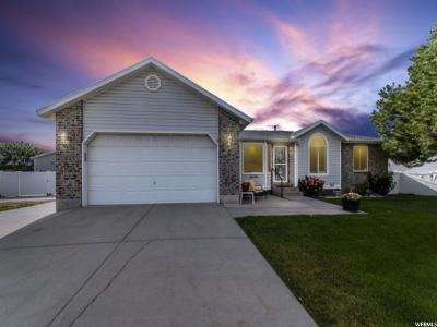 Riverton Single Family Home For Sale: 12478 S Elm Meadows Rd