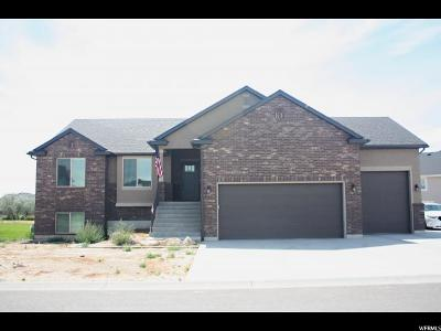 Weber County Single Family Home For Sale: 4871 W Jacquelyn Park Ln