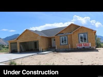 Salem Single Family Home For Sale: 158 E Wood Thrush Cv #83