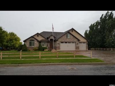 Weber County Single Family Home Under Contract: 6655 W 200 N