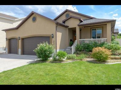 Tooele County Single Family Home For Sale: 257 W 230 N