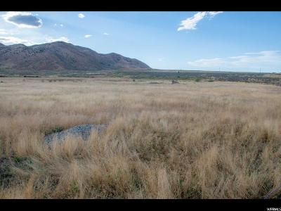 Tooele County Residential Lots & Land For Sale: 400 W Walk St